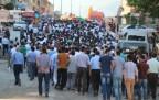Şemdinli'de binlerce kişi IŞID'i protesto etti