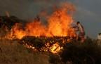 Şemdinli'de orman yangınına müdahale edildi