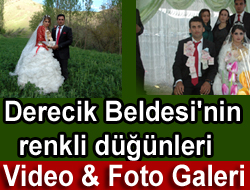<font color=red>Derecik Düğünleri</font>
