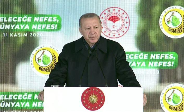 Erdoğan: Türkiye çevre bakımından altın dönemini son 18 yılda yaşadı