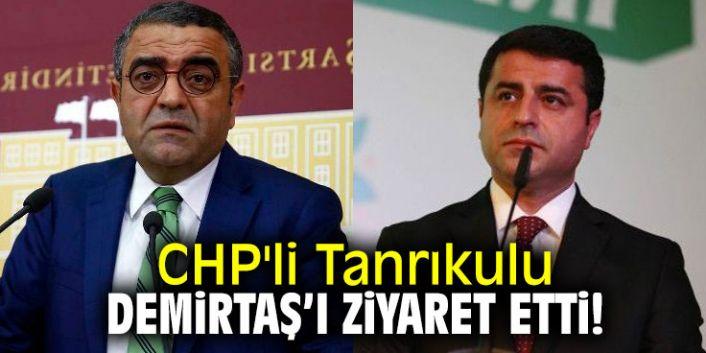CHP'li Sezgin Tanrıkulu, Selahattin Demirtaş'ı ziyaret etti