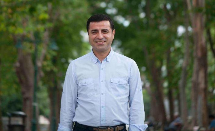 Demirtaş'ın avukatından Türkiye'nin avukatına: Kestane kebap acele cevap