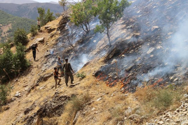 Hakkari Valiliği: Şemdinli'deki yangın kontrol altına alındı