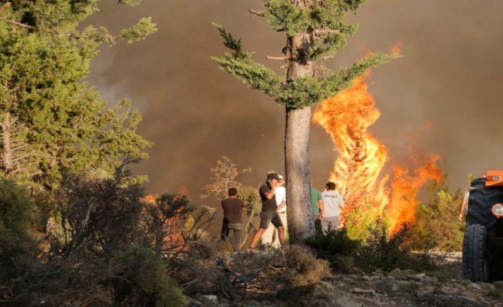 Manavgat'ta ateşin içinde 7 gün