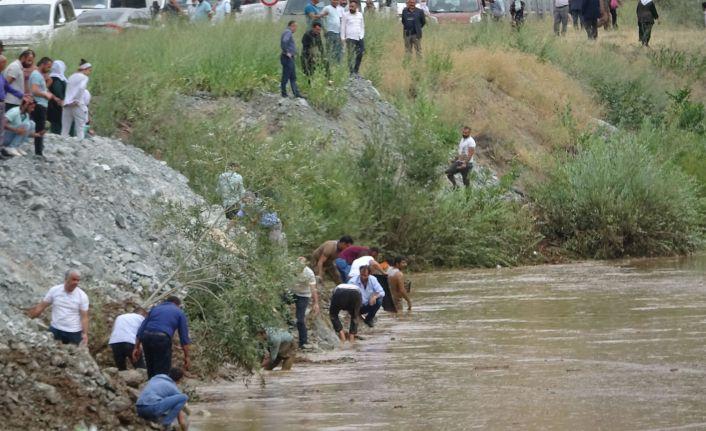 Yükselen Zap Suyu'nda binlerce balık öldü; düğüncüler balıklar için birbiriyle yarıştı