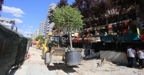 26 bin liralık ağaçlar ibret için Kızılay'a dikildi