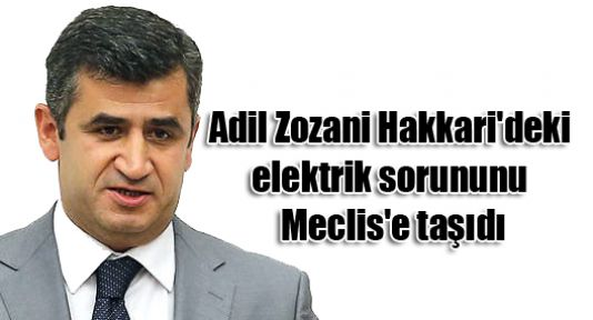 Adil Zozani Hakkari'deki elektrik sorununu Meclis'e taşıdı