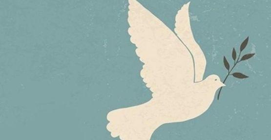 Barış İçin Akademisyenler: Kayıtsız şartsız göreve iade edin!