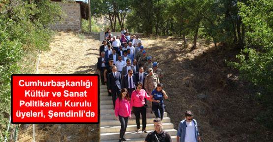 Cumhurbaşkanlığı Kültür ve Sanat Politikaları Kurulu üyeleri, Şemdinli'de