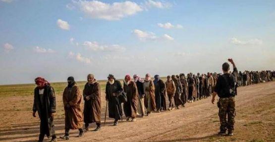 DSG 34 IŞİD'liyi daha serbest bıraktı