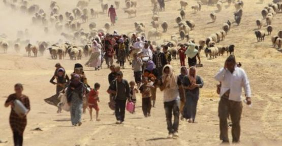 'Erbil Ezidileri 5 milyon dolara kurtardı'