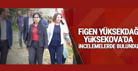 Figen Yüksekdağ, Yüksekova'da incelemelerde bulundu