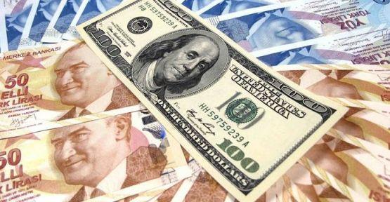 Goldman Sachs: TL, 12 ayda yüzde 15 düşebilir