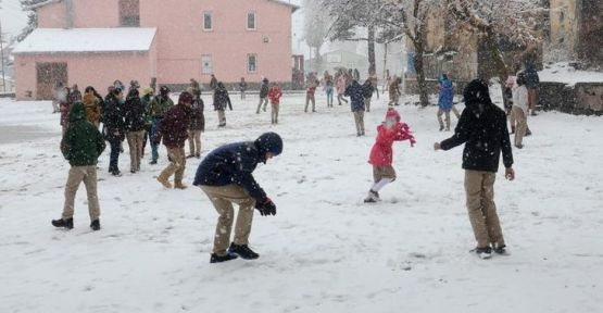 Hakkari, Başkale, Muradiye ve Bitlis'te okullar tatil!