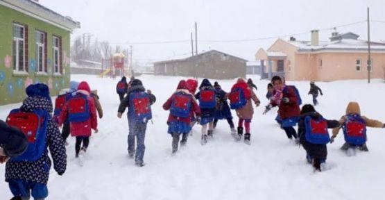 Hakkari merkez ve Yüksekova da okullar tatil edildi