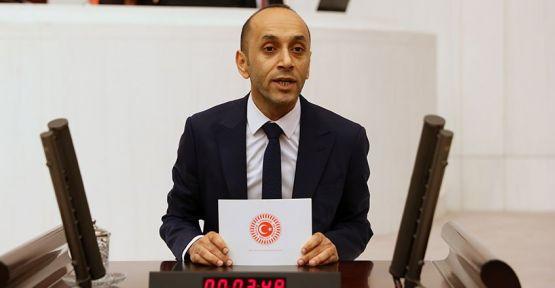 HDP'li Dede, TBMM'de esnafın mağduriyeti hakkında konuştu