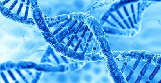 İnsan genleri istenmeyen bazı değişimler üretebiliyor