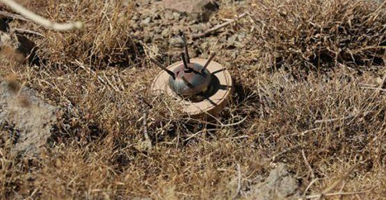 Rojava'da mayına basan 7 kişi hayatını kaybetti