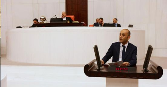 Sait Dede Hakkari'nin yol sorununu meclise taşıdı