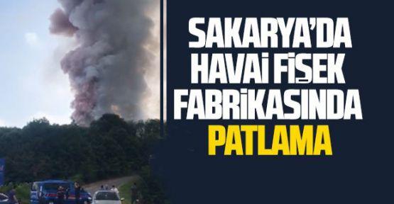 Sakarya'daki havai fişek fabrikasında patlama: 2 ölü, 73 yaralı