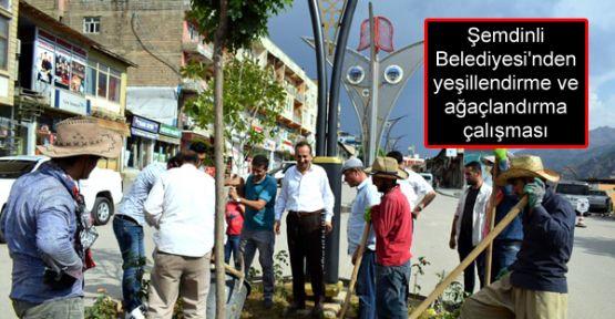 Şemdinli Belediyesi'nden yeşillendirme ve ağaçlandırma çalışması