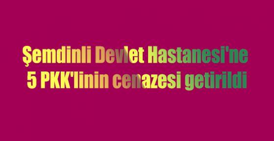 Şemdinli Devlet Hastanesi'ne 5 PKK'linin cenazesi getirildi