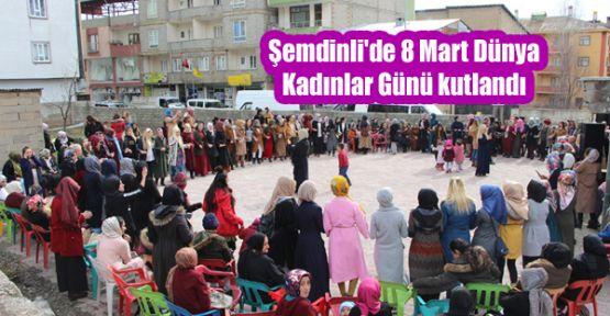 Şemdinli'de 8 Mart Dünya Kadınlar Günü kutlandı