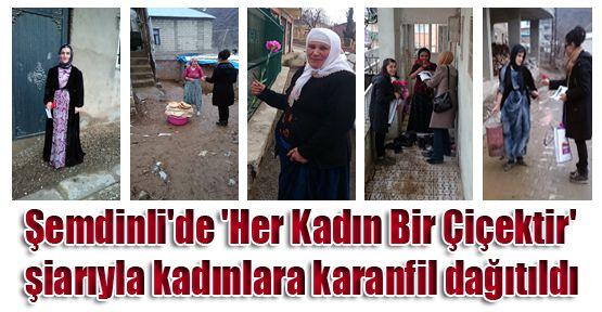 Şemdinli'de kadınlara karanfil dağıtıldı
