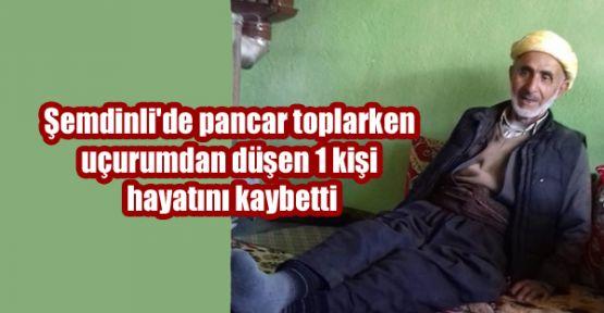 Şemdinli'de uçurumdan düşen 1 kişi hayatını kaybetti
