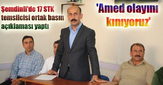 Şemdinli'de 17 STK temsilcisi ortak basın açıklaması yaptı