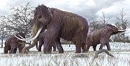 4 bin yıl sonra dünyaya geliyorlar!
