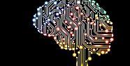 Bilimden yapay zeka uyarısı: Felakete...