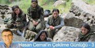 Hasan Cemal'in Çekilme Günlüğü (3)
