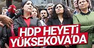 HDP ve DBP heyeti Yüksekova'da incelemelerde...