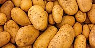 Hükümetten patates ve soğana müdahale