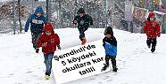 Şemdinli'de 5 köydeki okullara kar tatili