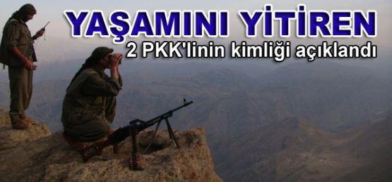Yaşamını yitiren 2 PKK'linin kimliği açıklandı