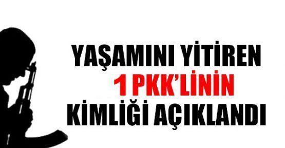 Yaşamını yitiren bir PKK'linin kimliği açıklandı
