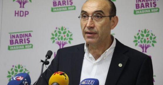 'Yeni anayasa Kürt ve Alevi sorunlarını çözmelidir'