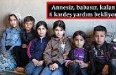 Şemdinli'de annesiz, babasız, kalan 6 kardeş yardım bekliyor