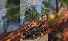 Hakkari Barosundan Şemdinli yangını açıklaması