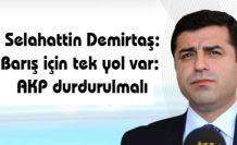 Selahattin Demirtaş: Barış için tek yol var: AKP durdurulmalı