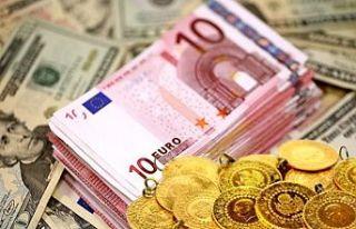 Euro rekor seviyeye yükseldi