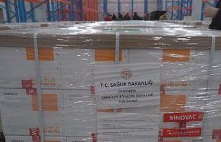 Çin'den 3 milyon doz koronavirüs aşısı Türkiye'ye...