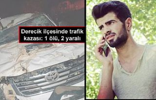 Derecik ilçesinde trafik kazası: 1 ölü, 2 yaralı