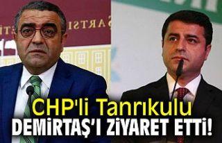 CHP'li Sezgin Tanrıkulu, Selahattin Demirtaş'ı...
