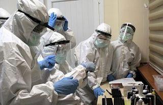 Covid sertifikası şartı geldi, İtalyanlar aşı...