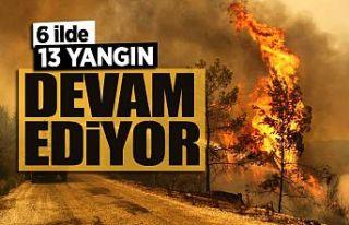 Bakan Pakdemirli: 6 ilde 13 farklı yangın devam...