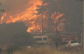 TTB'den 'Muğla' yangınları raporu:...