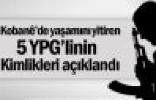 5 YPG'linin kimlik bilgileri açıklandı